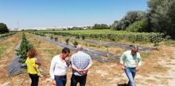 Nuevas oportunidades en Andalucia con IFAPA, CAAE y ASAJA Malaga